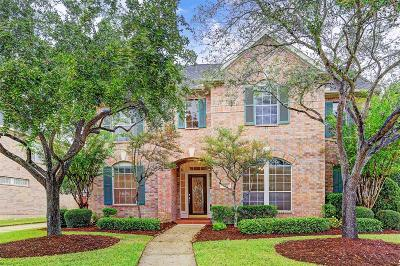 Houston Single Family Home For Sale: 5702 Sapphire Vista Lane