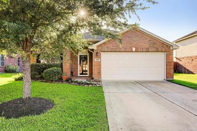League City Single Family Home For Sale: 2114 Goldfinch Lane
