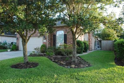 Pearland Single Family Home For Sale: 1254 N Riviera Circle