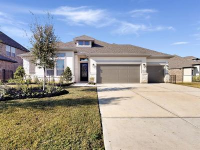 Tomball Single Family Home For Sale: 25 Botanical Vista Drive