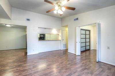 Houston TX Condo/Townhouse For Sale: $135,000