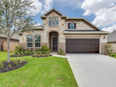 Tomball Single Family Home For Sale: 12119 Brighton Brook Lane