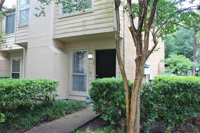 Houston Condo/Townhouse For Sale: 1500 Sandy Springs Road #29