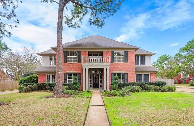 Houston Single Family Home For Sale: 2531 Fairwind Drive