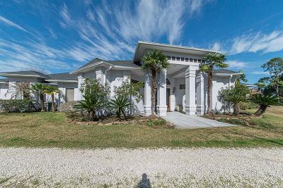 Richmond Single Family Home For Sale: 705 Settegast Ranch