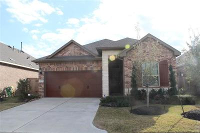 Houston TX Single Family Home For Sale: $268,900