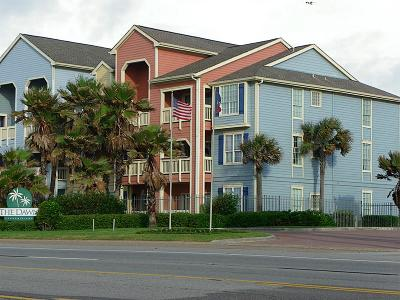 Galveston TX Condo/Townhouse For Sale: $215,000