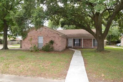 Houston Single Family Home For Sale: 6803 Desert Rose Lane