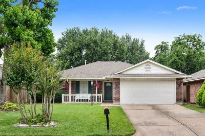 Houston Single Family Home For Sale: 18718 Parfield Lane