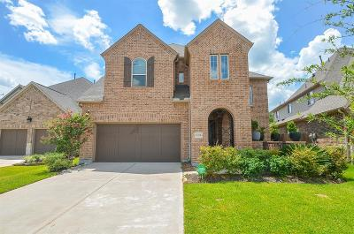 Houston Single Family Home For Sale: 13212 Stoneleigh Terrace Drive