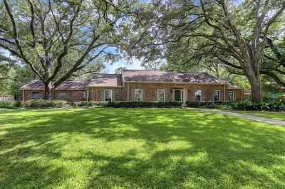 Houston Single Family Home For Sale: 11403 N Chestwood Drive