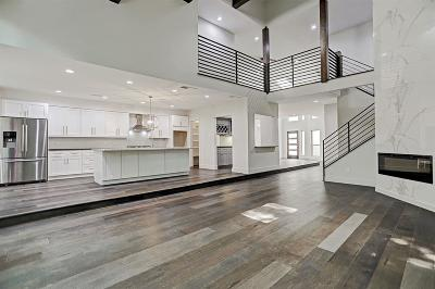 Harris County Condo/Townhouse For Sale: 9111 Briar Forest Drive