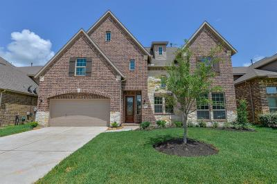 Richmond Single Family Home For Sale: 9102 Clearwater Ranch Lane