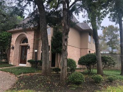 Houston Single Family Home For Sale: 803 Plainwood Drive
