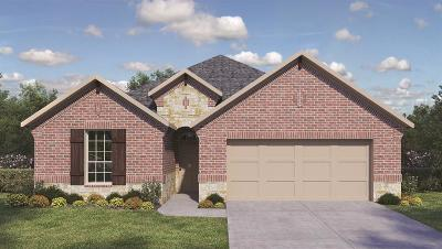 Rosenberg Single Family Home For Sale: 515 Yellow Bullhead