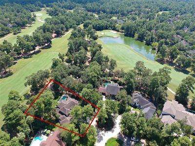 The Woodlands Single Family Home For Sale: 12 Box Turtle Lane