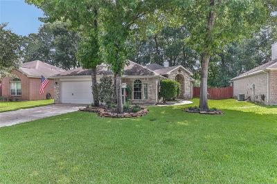 Conroe Single Family Home For Sale: 229 Adobe Terrace N
