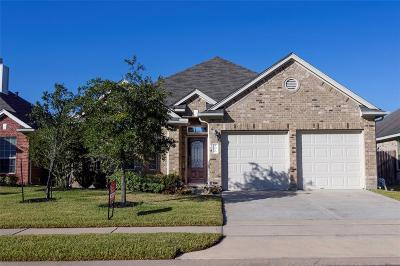 Tomball Single Family Home For Sale: 10010 Blissful Valley Lane