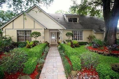 Houston Single Family Home For Sale: 942 Lehman Street