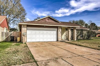 Houston Single Family Home For Sale: 5902 Angel Falls Lane
