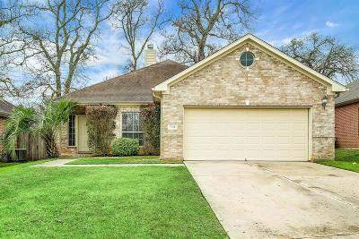 Conroe Single Family Home For Sale: 7821 Nikis Crossing