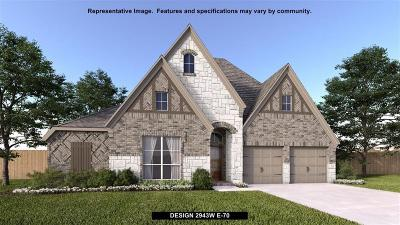 Tomball Single Family Home For Sale: 20139 Desert Foal Drive