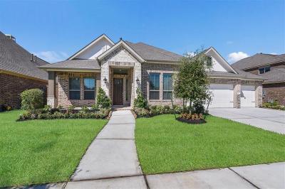 Webster Single Family Home For Sale: 626 East Fork