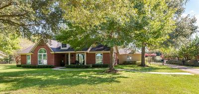 Katy Single Family Home For Sale: 3720 Katy Hockley Road