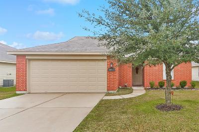 Houston Single Family Home For Sale: 13022 Rosemont Park Lane