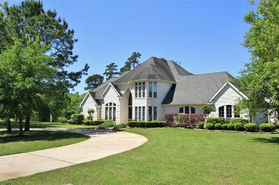Houston Single Family Home For Sale: 14535 Bridle Court