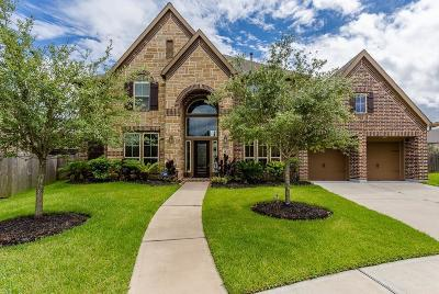 Pearland Single Family Home For Sale: 13610 Iron Landing Court