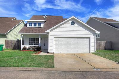 Tomball Single Family Home For Sale: 21226 Peachvine Lane