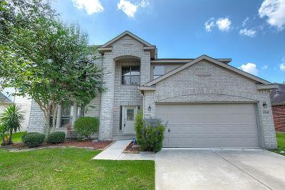 Sugar Land Single Family Home For Sale: 5318 Meadow Canyon Drive
