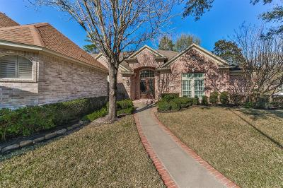 Houston Single Family Home For Sale: 22 Champion Villa Drive
