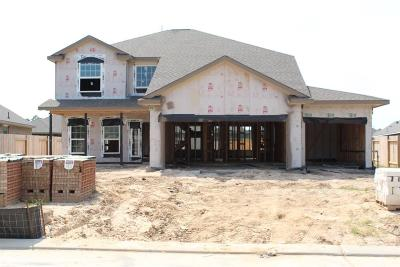 Porter Single Family Home For Sale: 21623 Flowering Crab Apple Drive