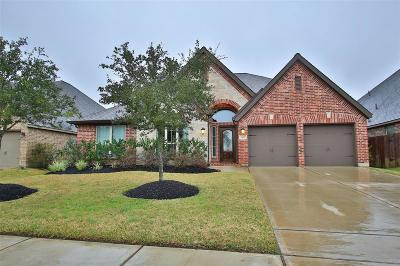 Pearland Single Family Home For Sale: 3425 Golden Cypress Lane