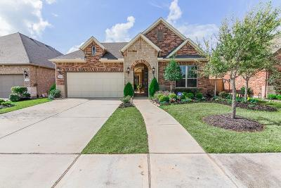 Katy Single Family Home For Sale: 26926 Carmel Falls Lane