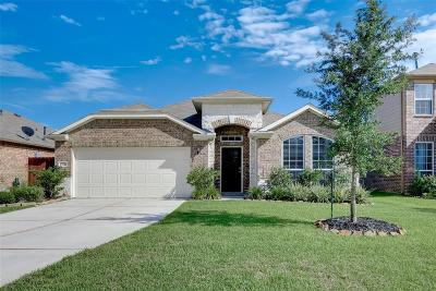 Conroe Single Family Home For Sale: 2522 Wood Park Boulevard