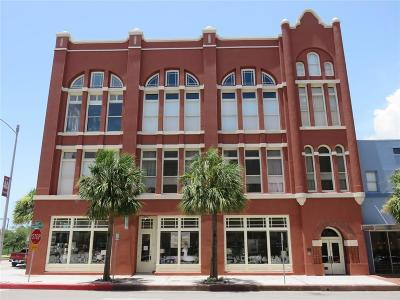 Galveston Condo/Townhouse For Sale: 525 22nd Street #7