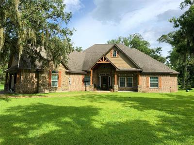 Brazoria Single Family Home For Sale: 4181 County Road 461a