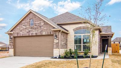 Spring Single Family Home For Sale: 29342 Fair Sky Trail
