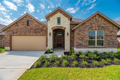 Katy Single Family Home For Sale: 28719 Forest Pass Lane