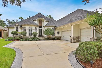Harris County Single Family Home For Sale: 13615 Sandpebble Chase