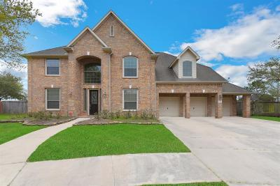 Shadow Creek Ranch Single Family Home For Sale: 2501 Seabrough Drive