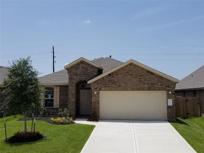 Katy Single Family Home For Sale: 4915 San Gregorio
