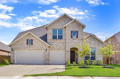Katy Single Family Home For Sale: 28006 Middlewater View Lane