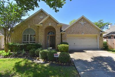 Houston Single Family Home For Sale: 13415 Terrace Wood Court