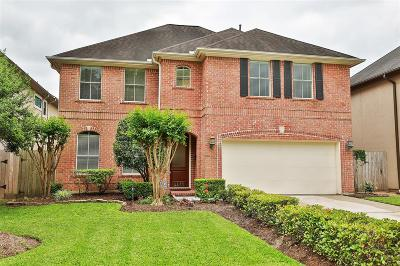 Galveston County, Harris County Single Family Home For Sale: 4433 Vivian