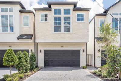 Houston Single Family Home For Sale: 5319 Larkin Street