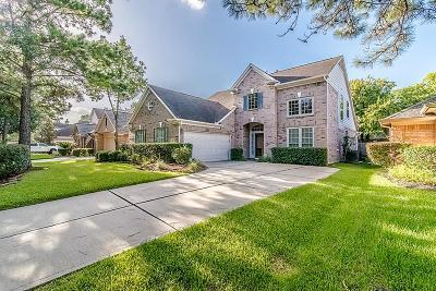 Houston Single Family Home For Sale: 9531 Shadow Gate Lane